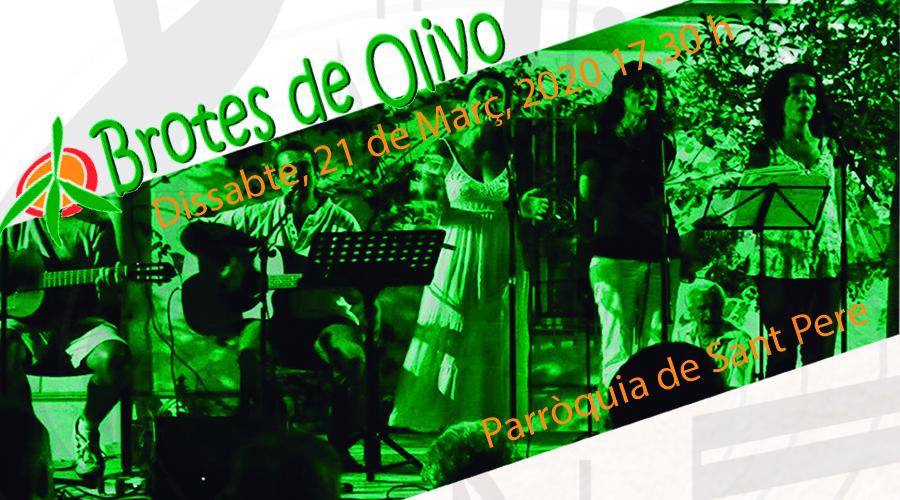 Concert Brotes Olivo Escola Montserrat